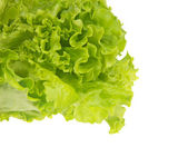Leaves of green fresh lettuce in the white bowl. — Stock Photo