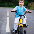 A little cyclist on the tour on the road — Stock Photo