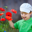 Cute little boy plays with a wild flower — Stock Photo