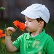 Cute little boy smells a wild flower — Stock Photo