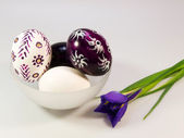 Easter eggs with iris flower — Stock Photo