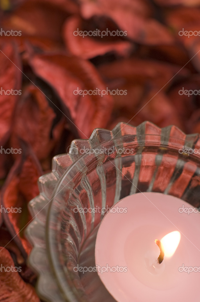 Pink candle detail vertical photo, dried red flowers in background — Stockfoto #10103109