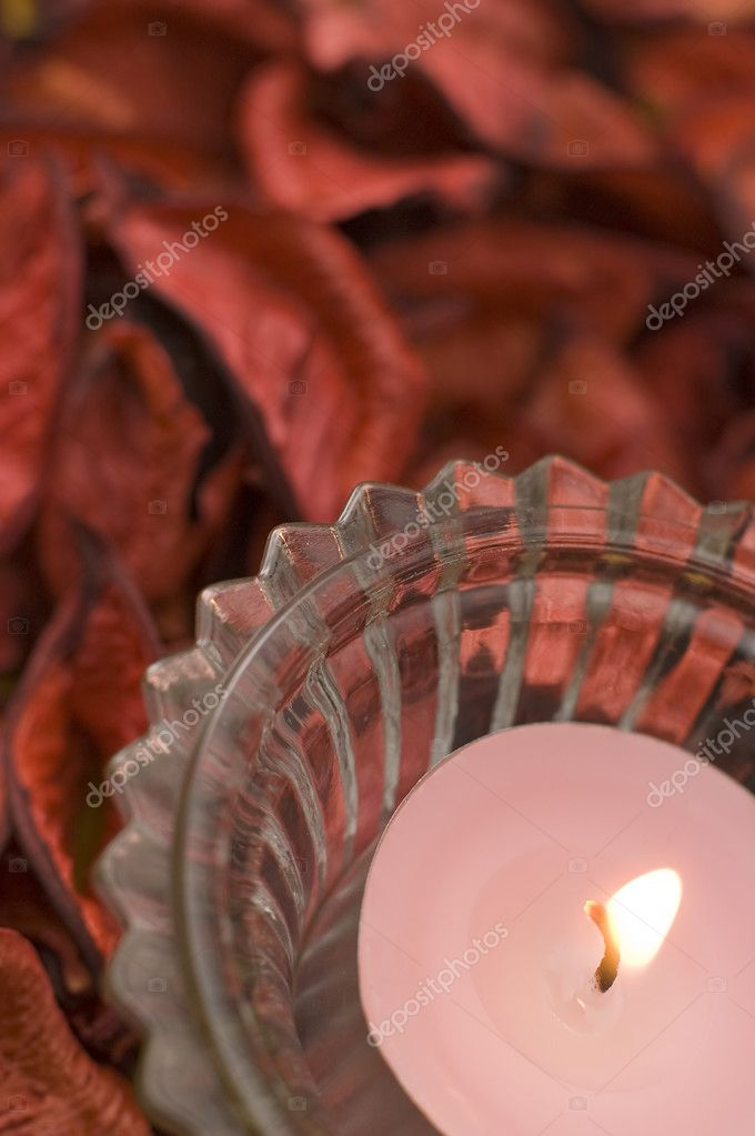 Pink candle detail vertical photo, dried red flowers in background — Foto de Stock   #10103109