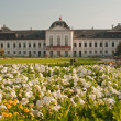 Grassalkovich palace — Stock Photo #10679509