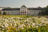 Grassalkovich palace — Stock Photo