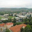Stock Photo: Trencin