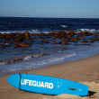 Stock Photo: Lifeguard