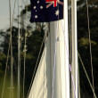 Australia sailing — Stock Photo