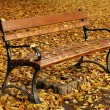 Bench in autumn — Stock Photo