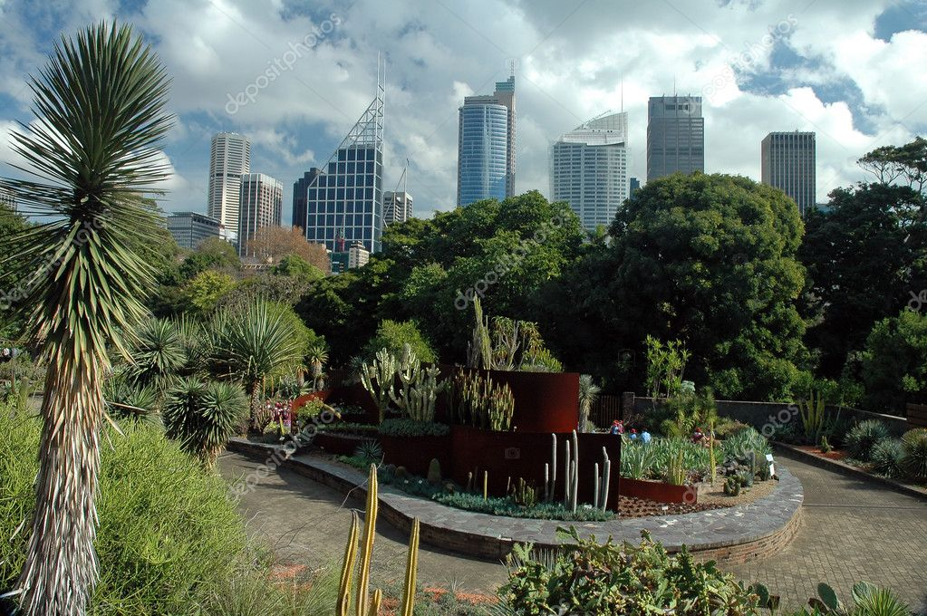 Sydney CBD from Royal Botanic Gardens, cloudy sky — Stock Photo #8227792