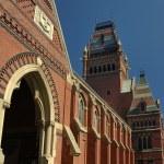 Harvard campus — Stock Photo