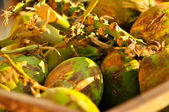 Green fresh coconut — Stock Photo
