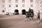 Horse-driven carriage, Vienna, retro postcard — Stock Photo