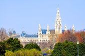 Town hall in Vienna, Austria — Stock Photo