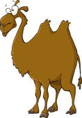 Cartoon Camel — Stock Vector