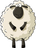 Cartoon sheep — Stock Vector