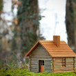 Wooden house — Stock Photo #8679208