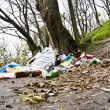 Trash forest — Stock Photo