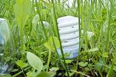 Grama de lâmpada — Fotografia Stock