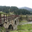 Railway Bridge in the Carpathians — Stock Photo