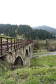 Railway Bridge in the Carpathians — Stock Photo