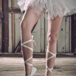 Beauty legs of ballerina standing in pointes - Stock fotografie