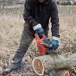 Lumberman working — Stock Photo