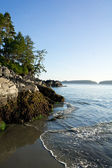 Coastline near Tofino, Canada — Stock Photo