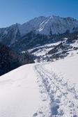 Schneebedeckten pfad — Stockfoto