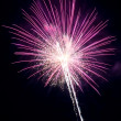 Pink Firework — Stock Photo