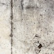 Concrete Texture — Stock Photo #10381312