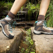 Hiking Boots — Stock Photo #10393977