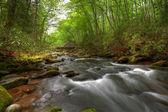 Bridge and stream — Stock Photo