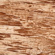 The texture of the plaster — Stock Photo