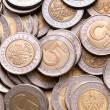Polish 5 pln coins background. — Stockfoto