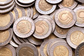 Polish 5 pln coins background. — Zdjęcie stockowe