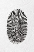 Fingerprint on a paper — Stockfoto