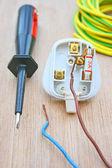 Plug and screwdriver. — Stock Photo