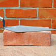 Bricklayers trowel — Stock Photo #8055603