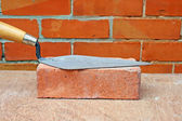 Bricklayers trowel — Stock Photo