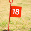 18th hole on putting green. — Stock Photo