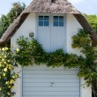 Stock Photo: Thatched garage.