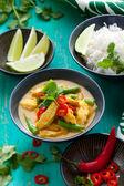 Pollo al curry con riso — Foto Stock