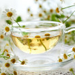 Chamomile tea — Foto de Stock