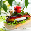 Grilled vegetables on toast — Stock Photo #10661706