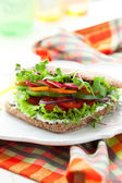 Vegetable Sandwich — Stock Photo