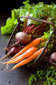 Fresh organic carrots and beet — Stock Photo