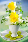 Narcissi in eggcups — Stock Photo