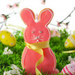 Easter bunny cookie — Stock Photo #8359157