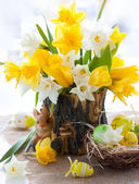 Narcissus and tulips for Easter — Stock Photo